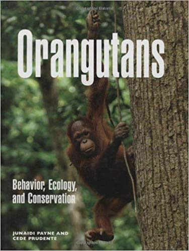 Orangutans: Behavior, Ecology, and Conservation