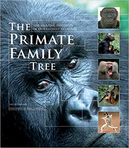 Primate Books The Primate Family Tree